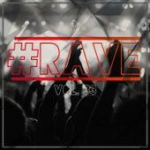 Rave, Vol. 33 von Various Artists