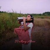 Walking Alone von Various Artists