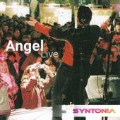 Angel (Live at Syntonia Concert, Milan, Italy, 2020) by Giorgio Aureli