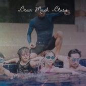 Bear Mash Blues von Various Artists