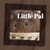 Little Pal by Various Artists