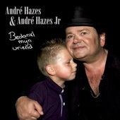 Bedankt Mijn Vriend van André Hazes