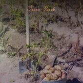 Tater Patch de Various Artists