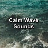 Calm Wave Sounds de Soothing Sounds