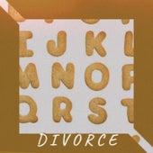 D I V O R C E by Various Artists