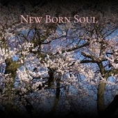 New Born Soul by Various Artists
