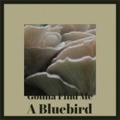 Gonna Find Me A Bluebird de Various Artists