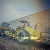 Tennessee Stud von Various Artists