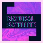Natural Satellite by Elvis Finol