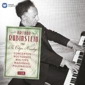 Icon: Arthur Rubinstein de Artur Rubinstein