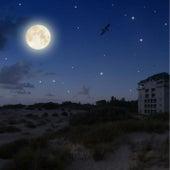 Calming Sounds | Sleep | Nature Melodies | De-Stress by Sleepy Times