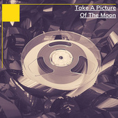 Take A Picture Of The Moon de Various Artists