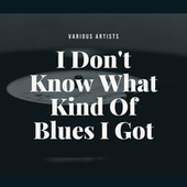 I Don't Know What Kind Of Blues I Got de Various Artists
