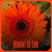 Moment Of Love de Various Artists