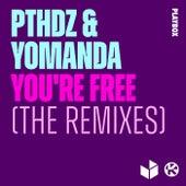 You're Free (The Remixes) von PTHDZ