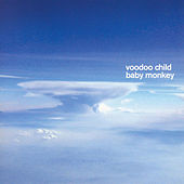 Baby Monkey by Voodoo Child