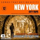 Songs That Define a City: New York, Volume 12 (The Sidewalks of New York) von Various Artists