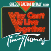 Why Can't We Live Together (Gregor Salto & Ibitaly Remix) by Timmy Thomas