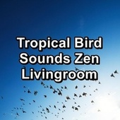 Tropical Bird Sounds Zen Livingroom by S.P.A