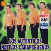 Volume 30 de Los Autenticos Nativos Carapegueños
