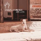 Vira-Lata de Bangalafumenga