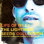 Life Of Riley - The Lightning Seeds Collection von The Lightning Seeds