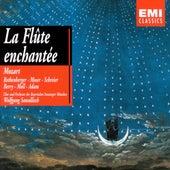 Flûte Enchantée Moser Moll von Wolfgang Sawallisch