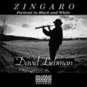 Zingaro (Portrait in Black  and White) (feat. Vic Juris, Tony Marino, Jamey Haddad & Café) de Dave Liebman