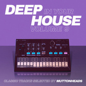 Deep in Your House, Vol. 9 - Classic Tracks Selected by Muttonheads fra Muttonheads