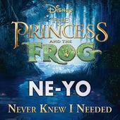Never Knew I Needed by Ne-Yo