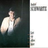 Lief Vir Alles Hier de Andre Schwartz