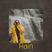 Standing in the Rain de Various Artists