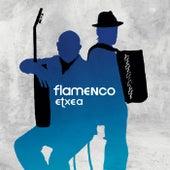 Flamenco Etxea by Jose Luis Monton