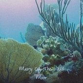 Mary Of The Wild Moor by Various Artists