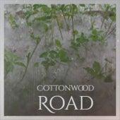 Cottonwood Road de Various Artists