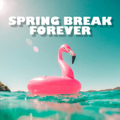Spring Break Forever by Various Artists