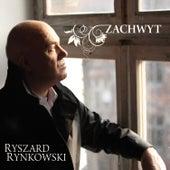 Zachwyt de Ryszard Rynkowski