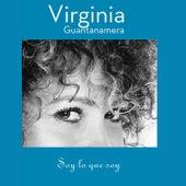 Soy Lo Que Soy: El Concierto (En Vivo) de Virginia Guantanamera