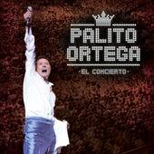 El Concierto by Palito Ortega