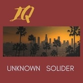UNKNOWN SOLIDER by IQ