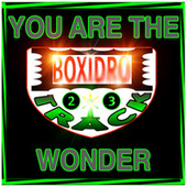 You Are the Wonder by Boxidro