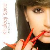 Khaleeji Spice de Various Artists