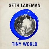 Tiny World by Seth Lakeman
