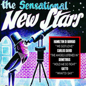 The Sensational New Stars by Vários Artistas
