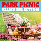 Park Picnic Blues Selection de Various Artists