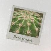 Tennesee waltz de Various Artists