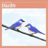 Birds von Sam Hawksley