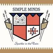 Sparkle In The Rain de Simple Minds