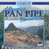 Haunting Pan Pipe Favourites de Blue Mountain Pan Pipe Ensemble