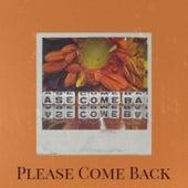 Please Come Back de Various Artists